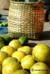 Robab tenga: grapefruit